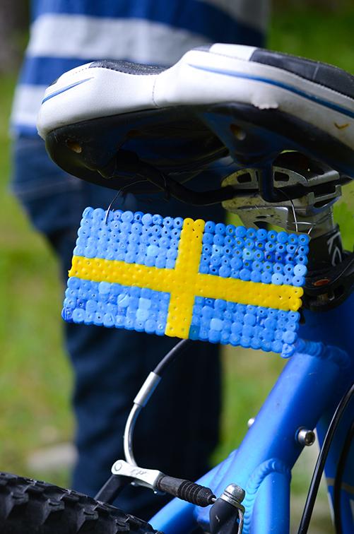 swedish-bead-license-lead500